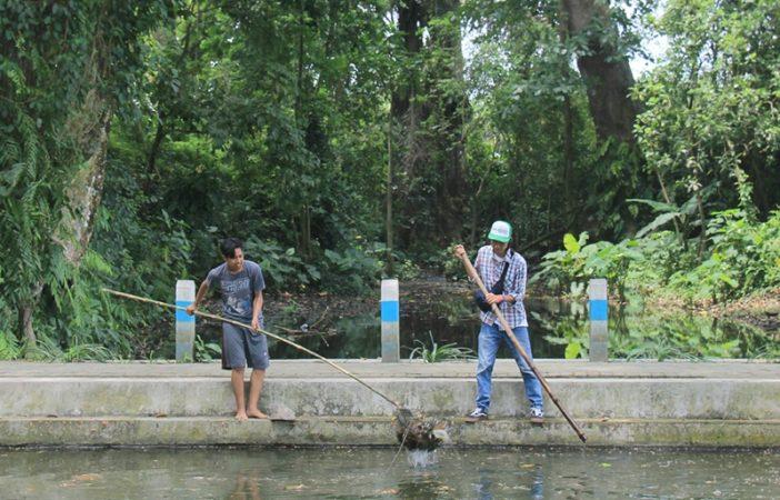 Satria Adam dan Irfandi dari GROVEK membersihkan kolam | Foto : Puguh Asmani